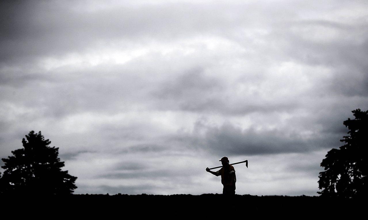歐盟每年的650億美元農業補助款最終不知去向,苦了農民卻造福寡頭政治人物。歐新社