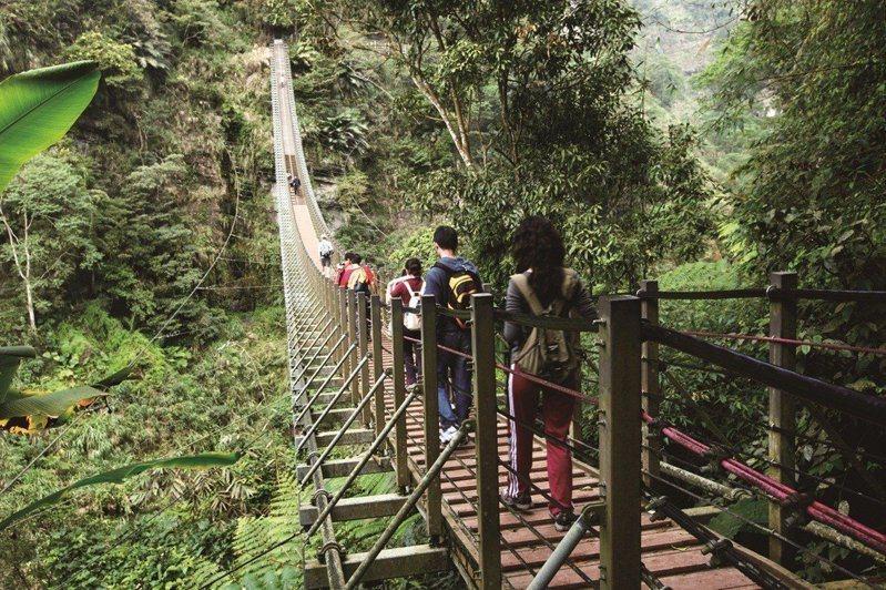 南投縣竹山鎮「太極峽谷天梯」兩端落差達20米高,以208個階梯設計打造,是全台首座階梯式吊橋。圖/本報資料照
