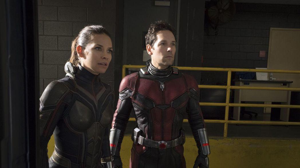 保羅路德、伊凡潔琳莉莉預計都會回歸「蟻人3」。圖/迪士尼提供