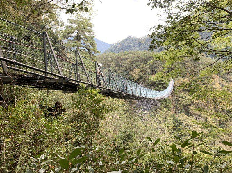 南投縣仁愛鄉奧萬大國家森林遊樂區前天發生男童墜橋身亡意外,檢警昨到現場進行勘驗。圖/讀者提供