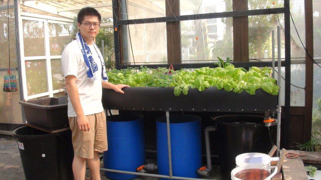 居家陽台只要有1.8米的空間,就能建置魚菜共生系統。 圖/王昭月攝影