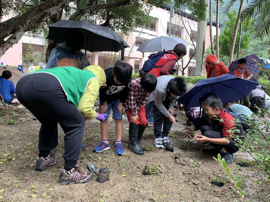 『2019植樹嘉年華-生態雙峰follow me-永續環境有go綻』活動,要將雙峰國小打造成為台灣原生植物的『諾亞方舟」生態學校。 圖/大新店有線電視提供
