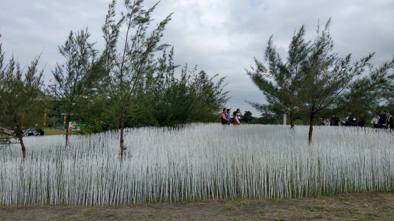宜蘭壯圍海邊以10萬根白竹籤點綴沙丘,擬造如夢似幻雪景,讓人驚豔,遊客走入「雪地...