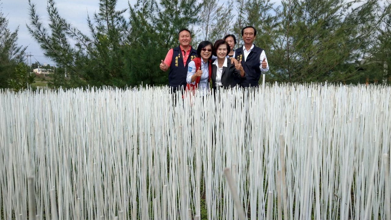 宜蘭壯圍海邊以10萬根白竹籤點綴沙丘,擬造如夢似幻雪景,宜蘭縣長林姿妙連聲大讚「...