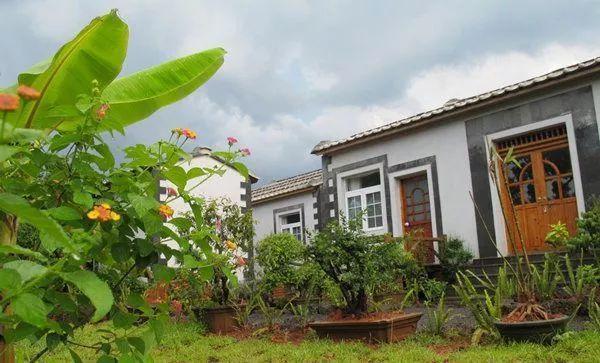 陳統奎的花梨之家民宿,有八間標準間,成為都市人們心中的桃花源。(海南網)