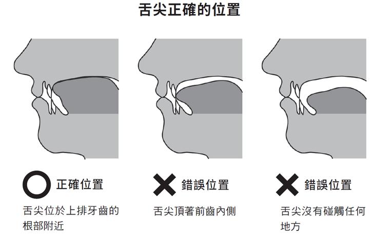 圖/摘自《35歲開始,牙齒決定你的後半生》