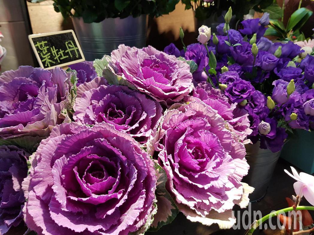 台北花卉產銷公司在農糧署支持下與台北捷運公司合作,於中山站設置實驗性花卉展示行動...