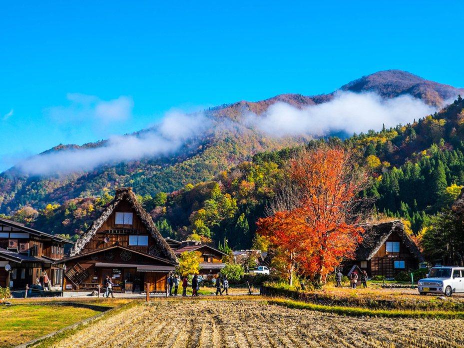 易遊網推出日本合掌村賞楓破盤優惠。圖/易遊網提供