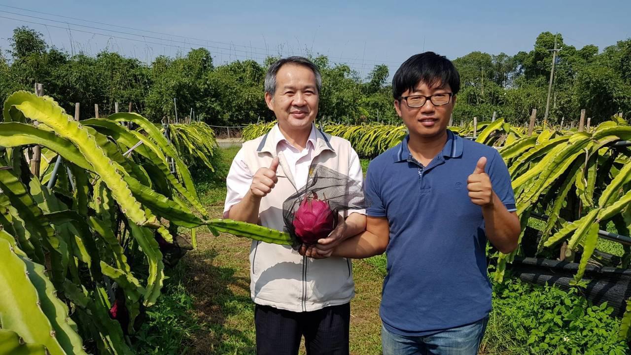張祿棠(右)台大園藝系研究所畢業返鄉種火龍果,創下每公斤200元的高價。圖/農業...
