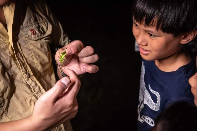 六福村2020年「兒童動物生態體驗營」,搶先在ITF台北國際旅展開賣。圖/六福村...