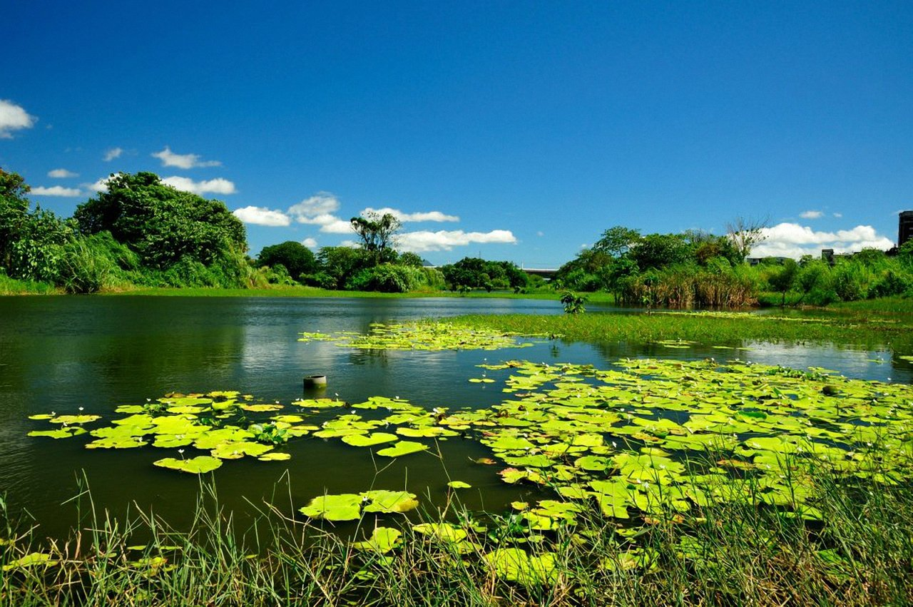 新北第3季濕地藝術節,以濕地的水源、土壤、生命、調節、緩衝、供給六大元素為創作主...