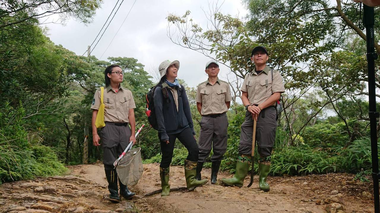 約僱森林護管員從事森林資源管理、森林保護、林地管理、植樹造林、撫育更新、步道巡護...