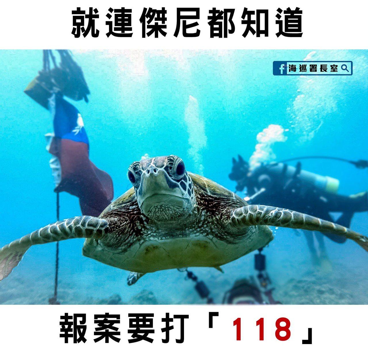 「海巡署長室Coast Guard」臉書粉絲網頁貼出一段海龜「維尼」的影片,提醒...
