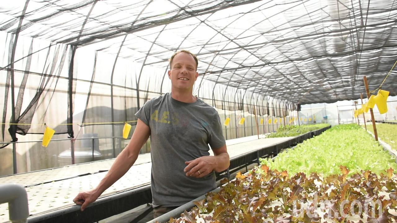 加拿大籍農民安東尼與妻子在中埔邑米社大有機生態教學農場有一塊小型溫室種植水耕蔬菜...