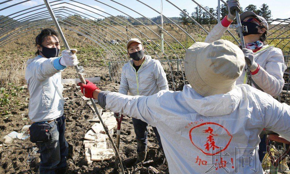 台灣志工穿著印有「丸森加油!」的外套,協助日本宮城縣丸森町風災災民清理家園。圖╱...