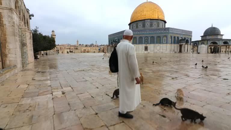 耶路薩冷一名退休的巴勒斯坦老爺爺,過去逾20年間,自己掏腰包餵養阿克薩清真寺的貓...