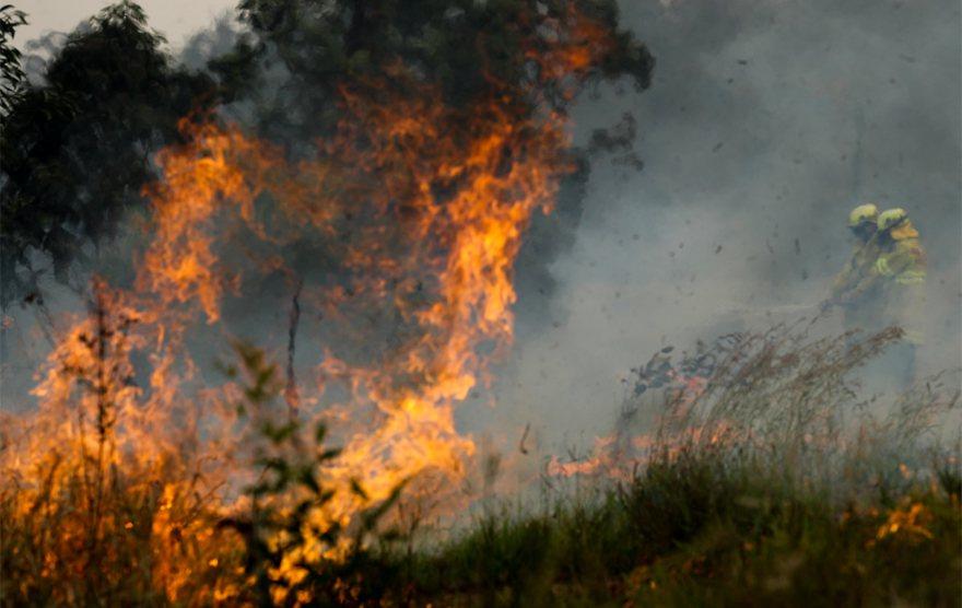 澳洲森林大火延燒,新南威爾斯州消防人員力抗。 新華社