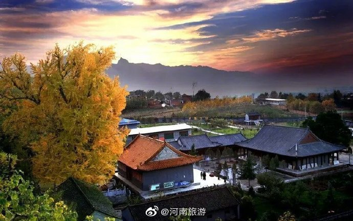 圖片來源/微博@河南旅遊