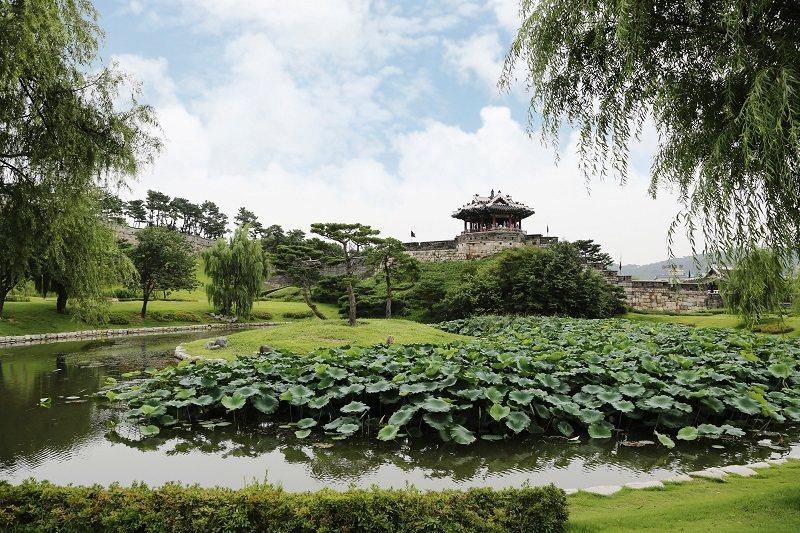 華城東北邊城上的訪花隨柳亭,夏日荷花翻起綠波。© 麥翔雲/旅讀中國