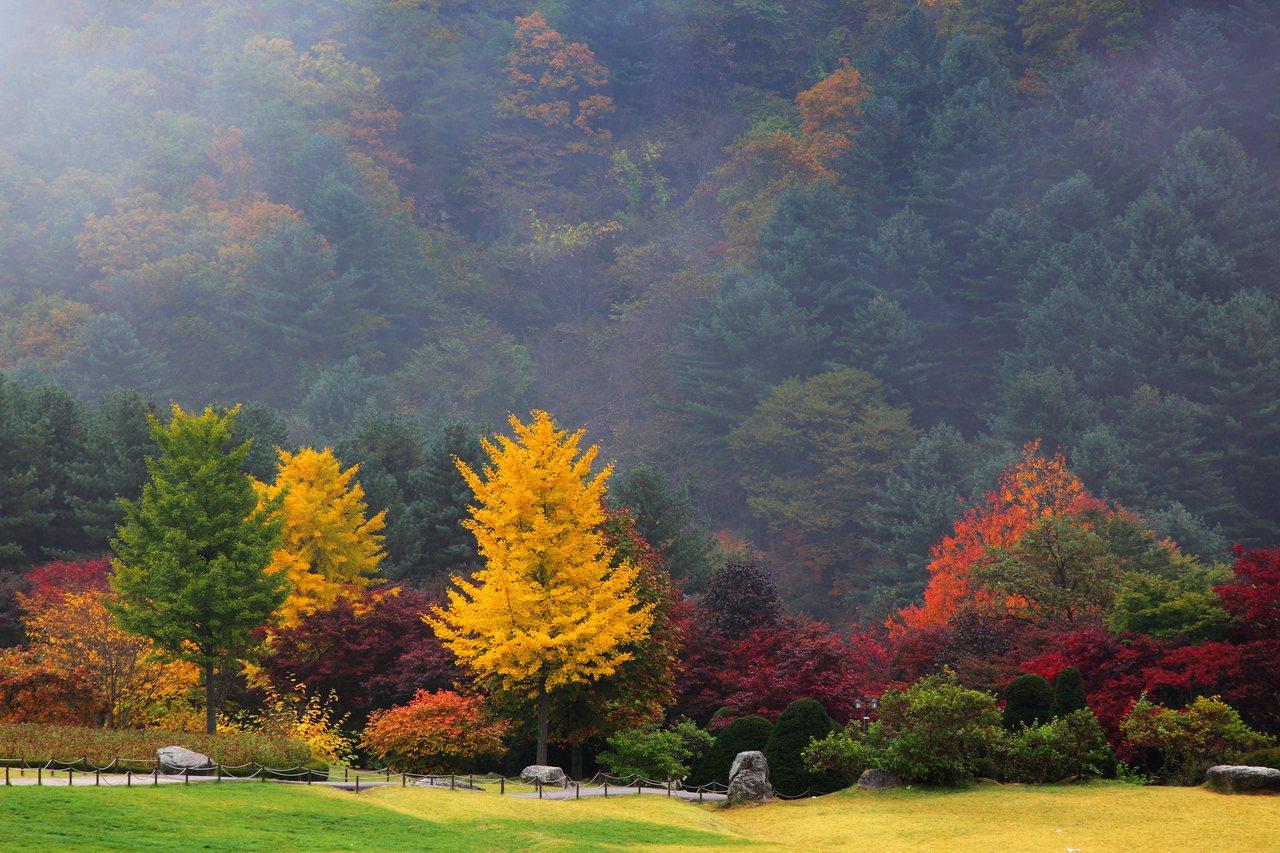 © 京畿道觀光公社提供