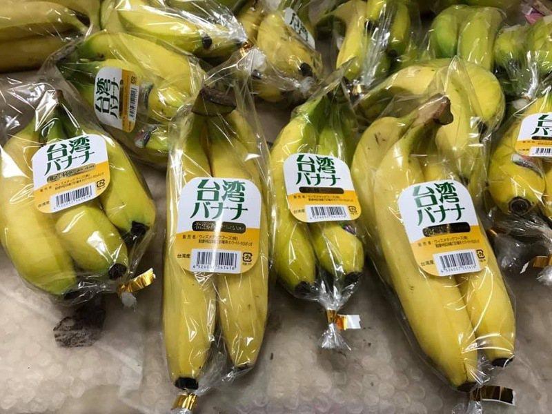 高雄市農業局統計今年截至10月底,高雄香蕉外銷量已達1234公噸、產值達3376萬,已超越去年全年香蕉的外銷量。圖/高雄市農業局提供