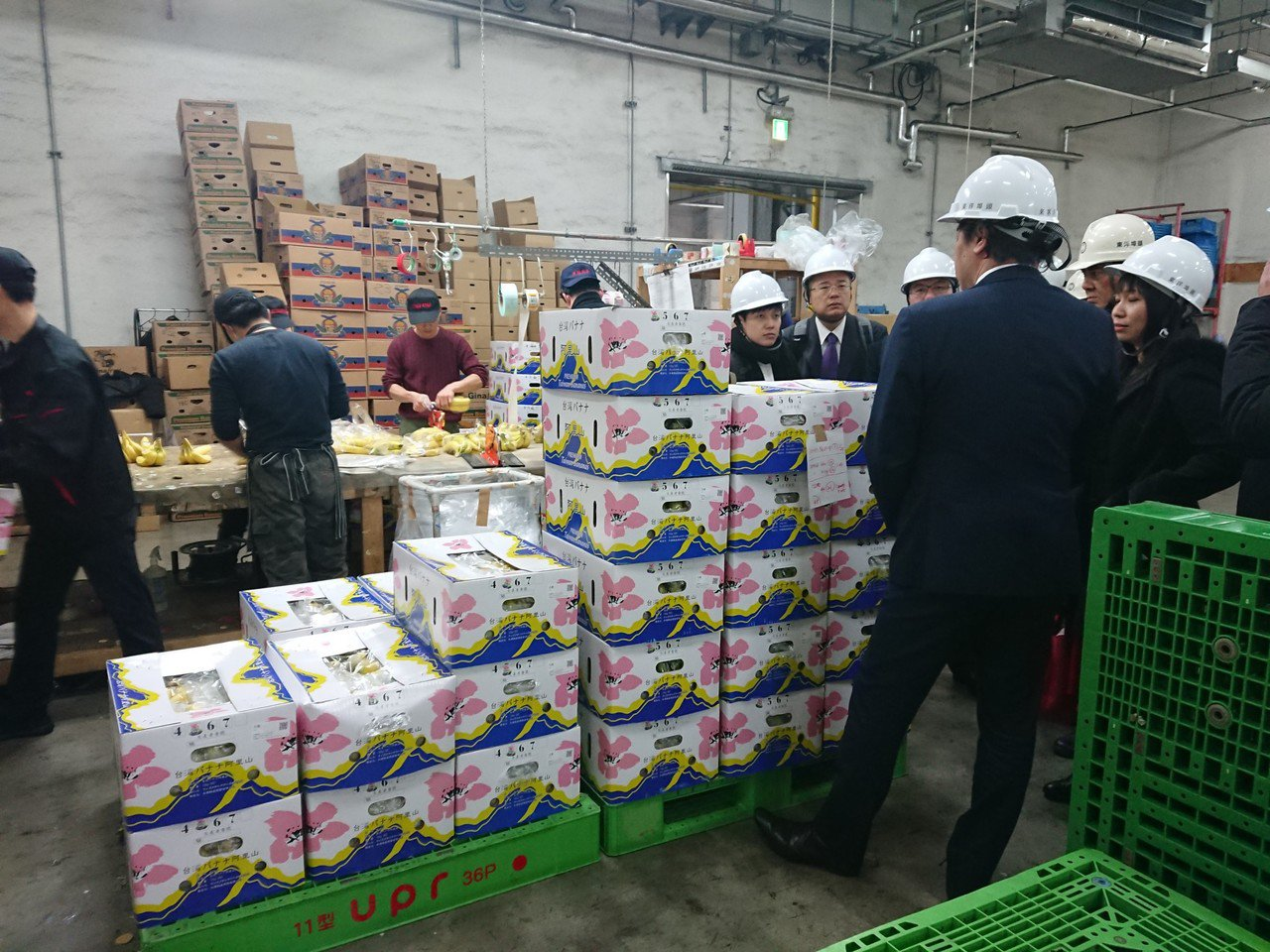 高雄市農業局統計今年截至10月底,高雄香蕉外銷量已達1234公噸、產值達3376...