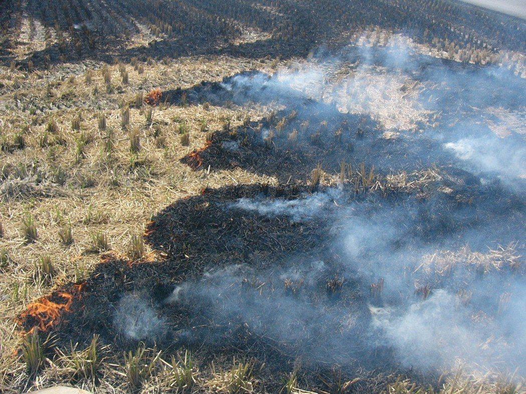 為避免農友們露天燃燒稻草以方式處理,南投縣環保局將啟用空拍比對二期稻作,查獲將處...