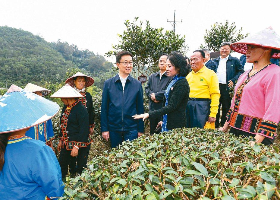中共中央政治局常委、國務院副總理韓正9日至11日到海南調研。圖為11月10日,韓正在五指山椰仙有機茶生態觀光園考察並與當地農民和貧困戶交流。 新華社