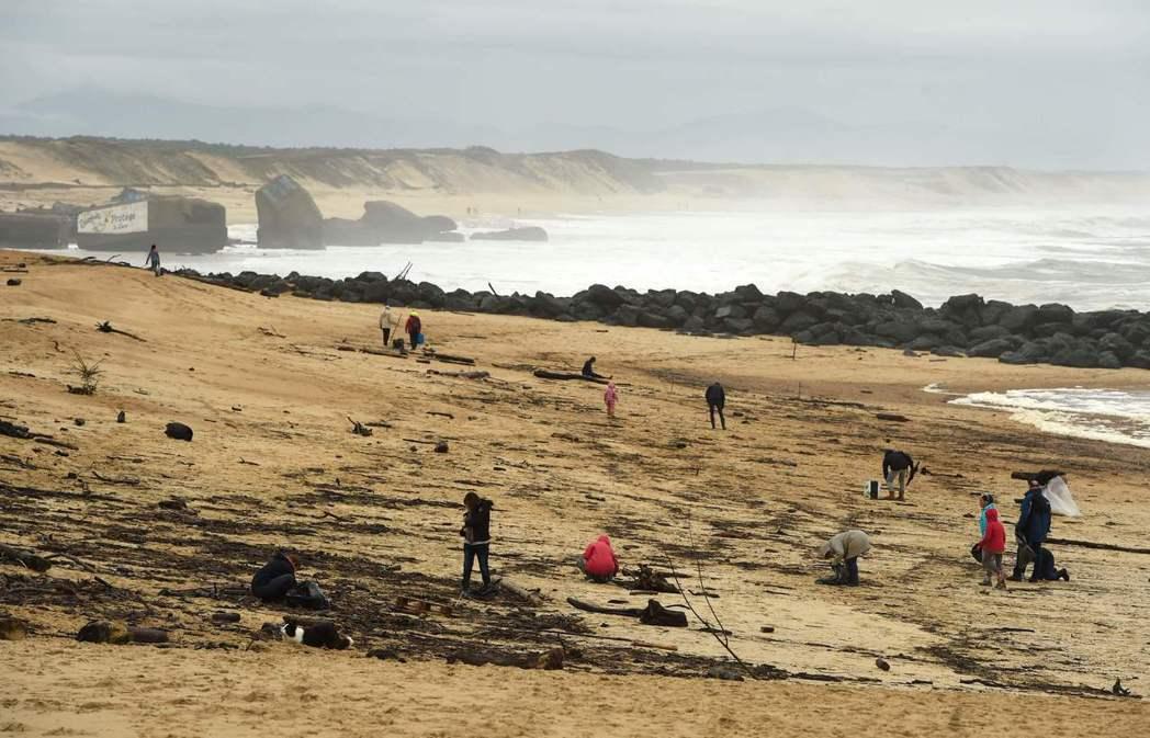 最近約有900公斤高純度的古柯鹼被沖上法國海岸。法新社