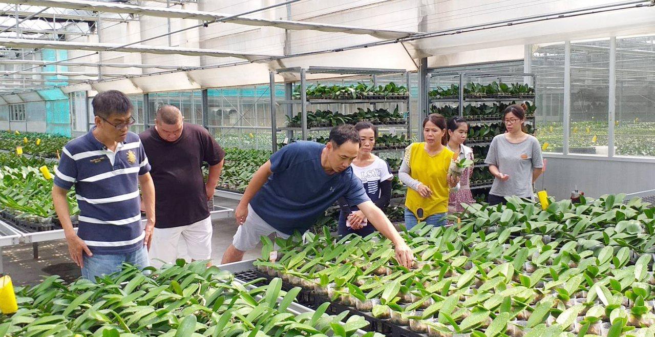 玉沙農場公司透過申請「小型企業人力提升計畫」辦理課程,展現具體成果。圖/ 勞動部...