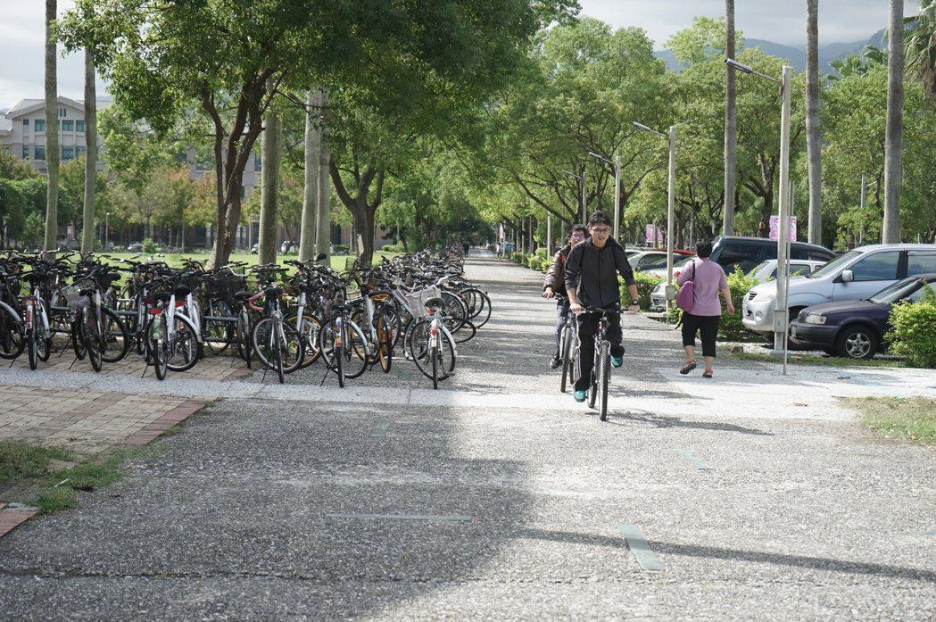 國立東華大學位於花蓮,校園環境幽美,校方歡迎在港台生返台試讀。圖/報系資料照片