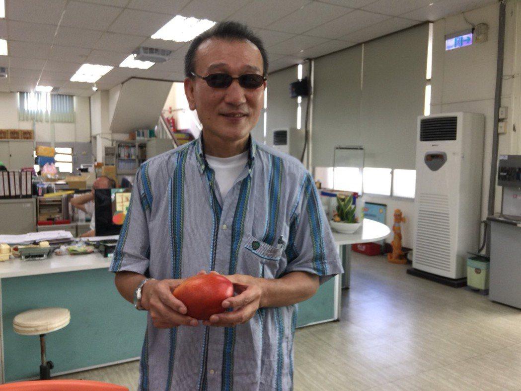 日本遊客松下等今年7月慕名到台南玉井體驗採芒果。圖/玉井區公所