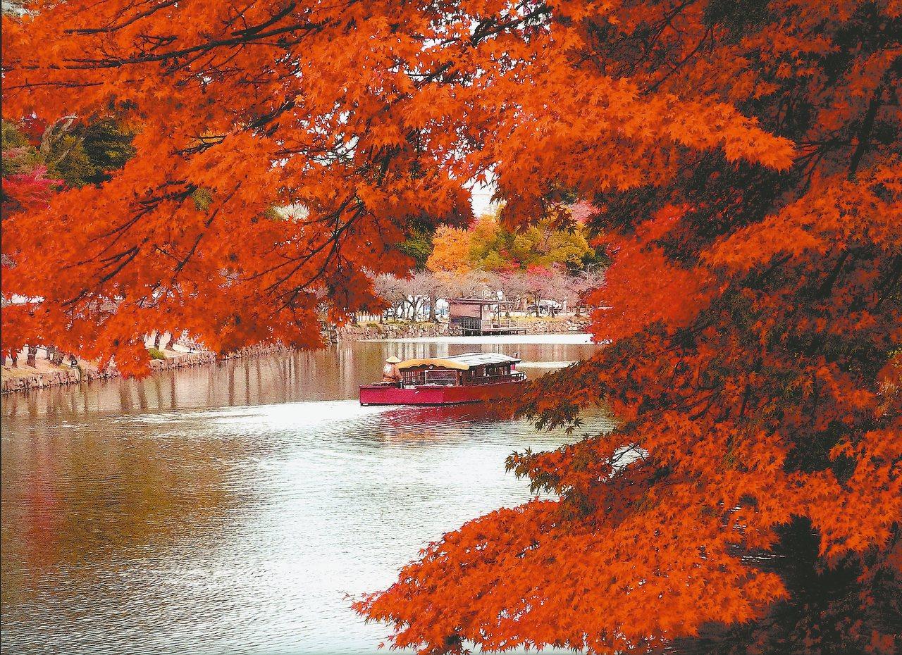 不僅陸地賞楓,在彥根城可搭乘遊船賞楓。 圖/琵琶湖・近江路觀光圈活性化協議會提供...