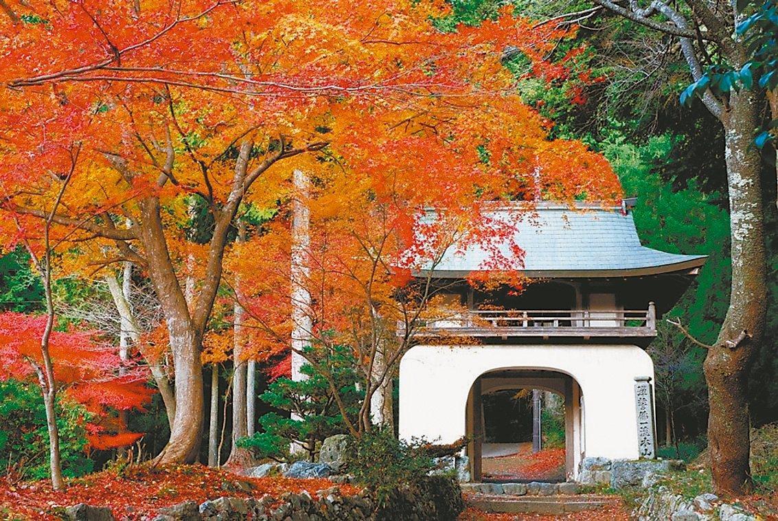 古知谷阿彌陀寺是自古就饒富盛名的賞楓名所。 圖/京都市台灣推廣事務所提供