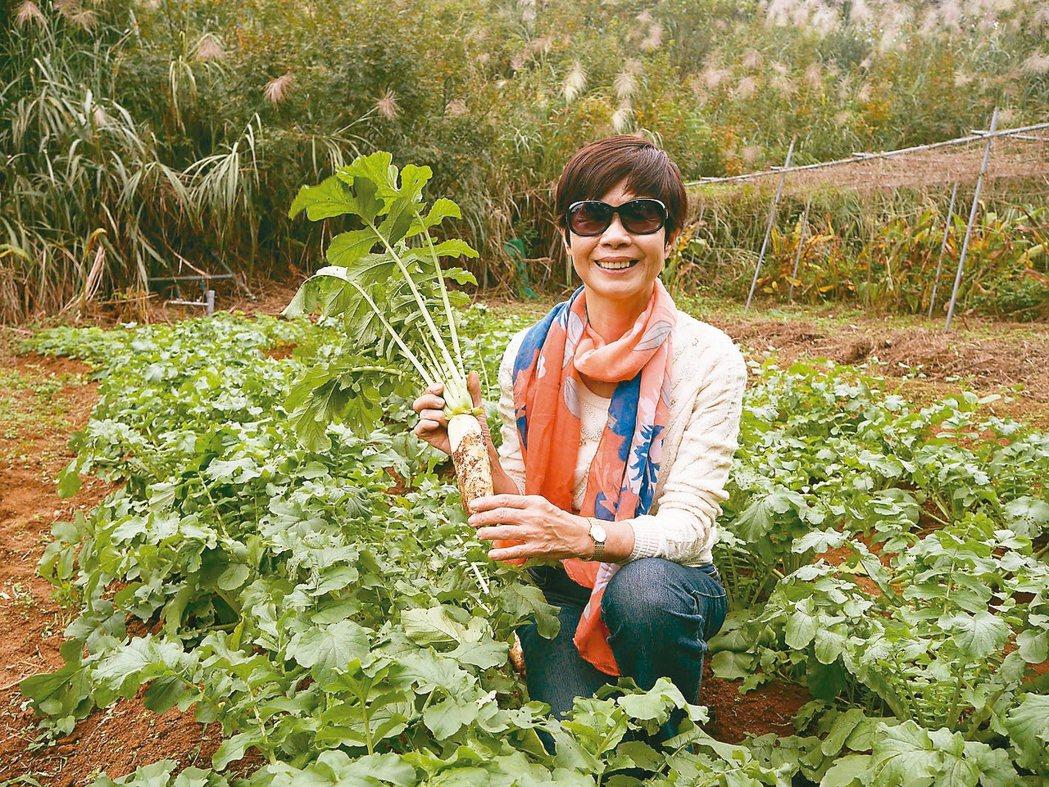 林月慎現在的生活重心是種菜;親近泥土,回到出生地,讓她覺得幸福又富足。 圖/吳淑...