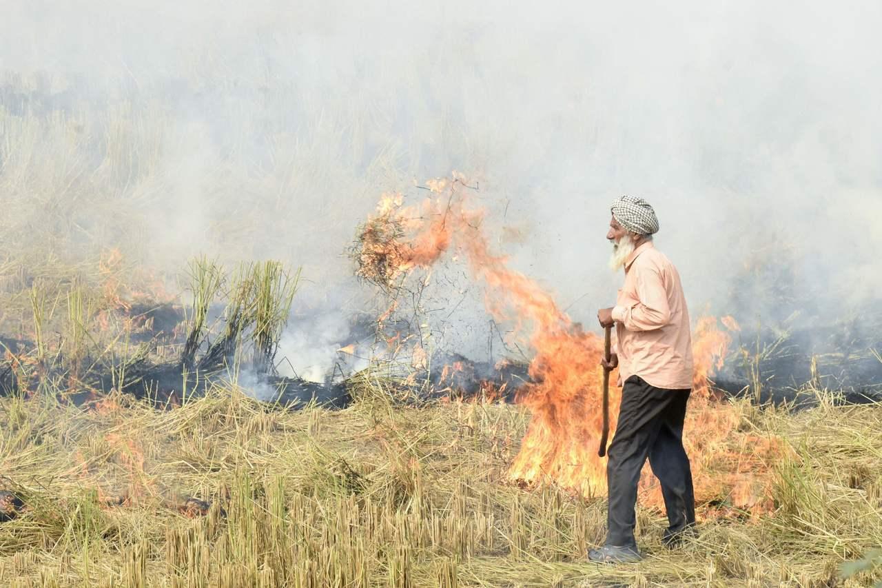 農民在收成後燃燒稻草,是造成毒霧瀰漫的原因之一。 (法新社)