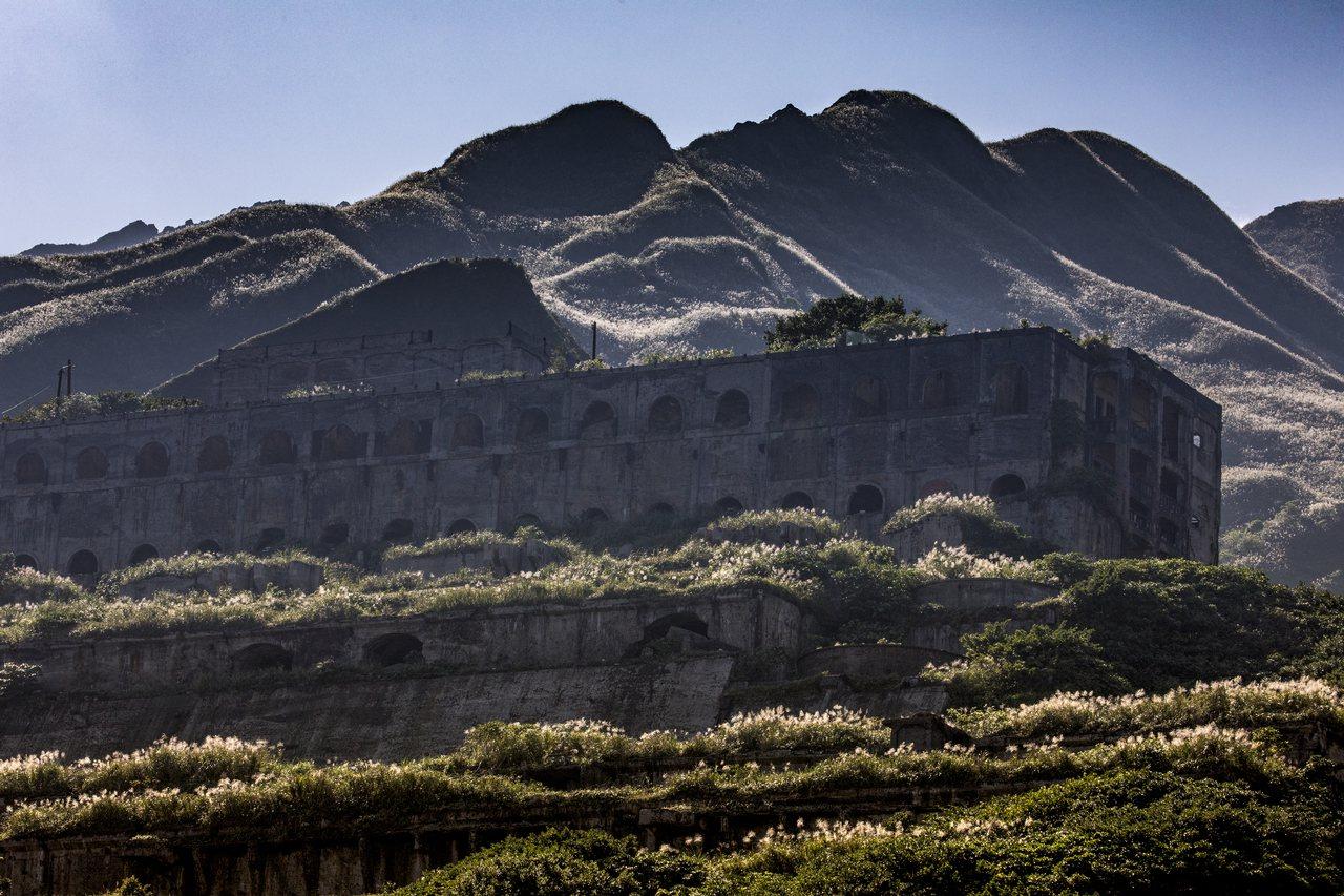 「攝影天團」團長張隆推薦東北角秋芒祕境路線,十三層、不厭亭及茶壺山腳下,可以享受...