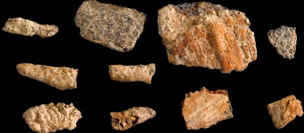 上里遺址出土的鐵器文化遺留(如圖),三和史前文化早期也出土鐵器遺留,讓兩者具有關...