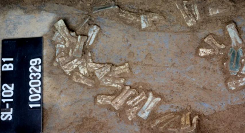 上里遺址出土的陪葬的几形玉耳玦與卑南史前文化几形玉耳玦相似。圖/史前館