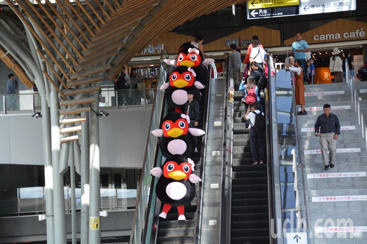 可愛的花蓮紅面鴨今天一字排開搭乘手扶梯現身花蓮火車站,萌樣超吸睛。記者王燕華/攝...