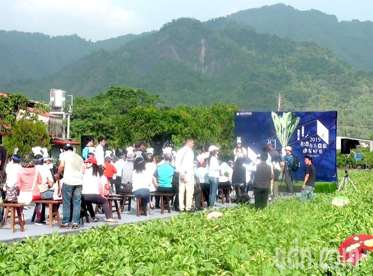 高雄美濃白玉蘿蔔與好豆季首度把開幕典禮移至田間。記者王昭月/攝影