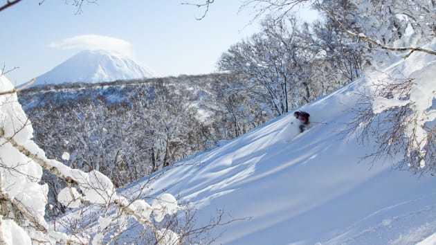 北海道新雪谷町。(網路照片/Scott Dunn旅行社提供)