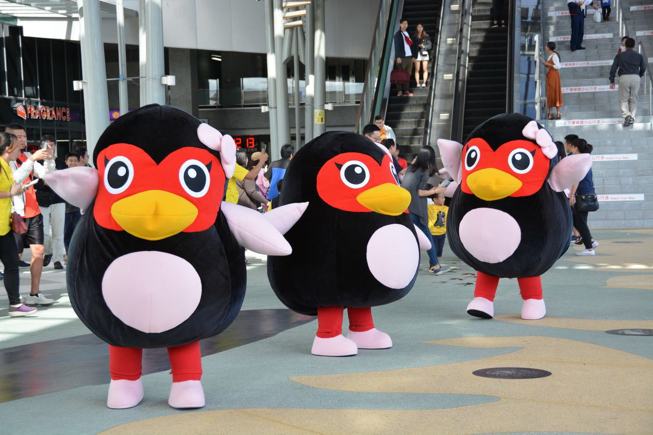 可愛的花蓮紅面鴨昨現身花蓮火車站快閃熱舞,萌樣吸引遊客爭睹。記者王燕華/攝影