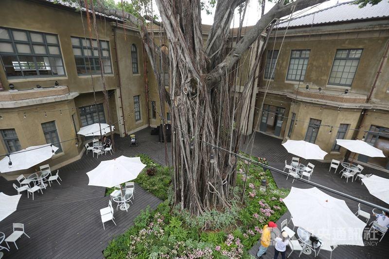 藝人林志玲今天將在台南市美術館1館舉行婚禮,宴客場所位處舊館和新館間的廊道,廊道...