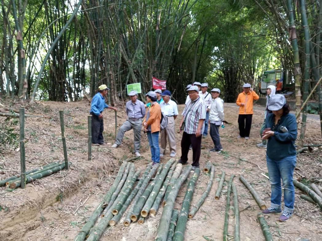 莿竹砍伐後進行分級作業。 農業局/提供