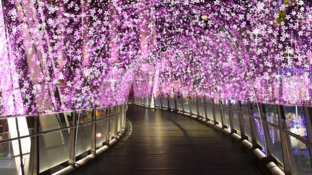 紫戀光廊。 圖/2019新北耶誕城官網
