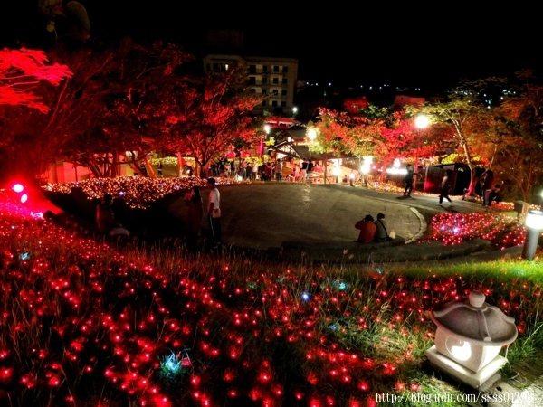 整座公園被紅色燈海包圍著,在現場看更容易被眼前的幸福畫面感動到喔!