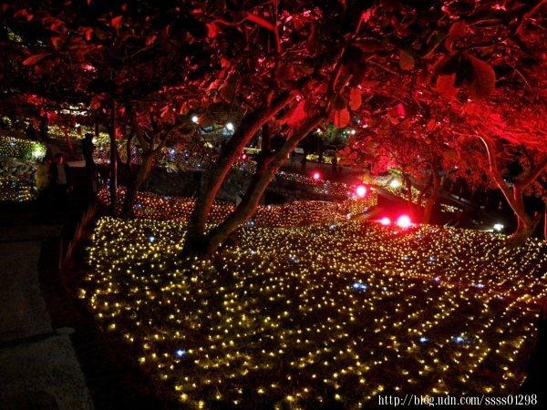 如繁星閃閃的璀璨燈海將公園裝扮成最美容貌,轉個角度都會美到讓人想拍照