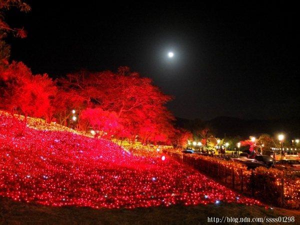每到秋冬會舉辦一年一度的四重溪溫泉季,今年得以欣賞到滿滿一整片「楓紅」主題營造的火紅色燈海