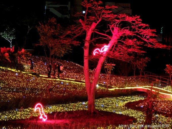 除了靜態燈光外,也有楓葉投影和松鼠爬樹的光影等,營造出賞燈時的生動效果,十足療癒